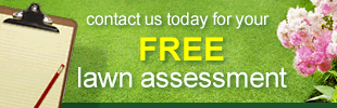 Get your FREE Lawn Assessment
