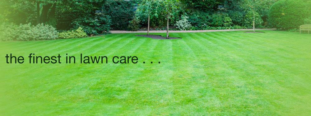 lawn treatment services - Lawn Treatment